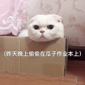 刘二豆和瓜子最新视频 瓜子没明白画中的意思