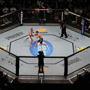 UFC299终极之战现场斗殴视频