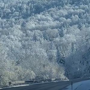 东北的初冬 真正的银装素裹