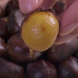 微波炉糖炒栗子做法视频