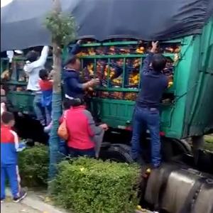 大货车发生事故,家长带孩子哄抢橘子