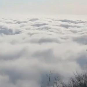 武功山超美日出云海视频