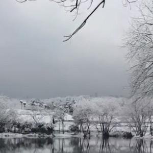 雪后的西湖宛如仙境