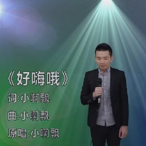 大頭零演唱《好嗨哦》参加中国好声音视频 作词作曲竟然是小啊飘