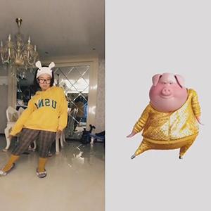 抖音魔性猪猪舞神同步视频