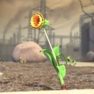 动画短片《杂草的梦想》完整版在线观看