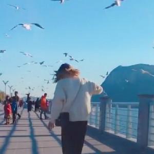长板女孩带你看昆明冬天视频