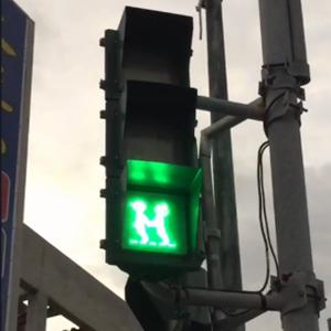 连红绿灯都在过情人节 我酸了