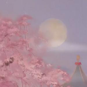 动画短片《月老》完整版在线观看视频