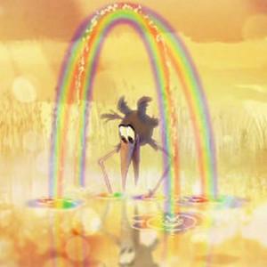 奥斯卡最佳动画短片《鸟的报应》完整版在线观看视频
