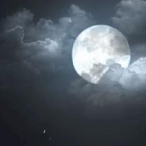 《出山》之李白凤求凰视频