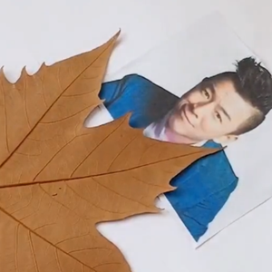 民间高手用叶子雕刻出黄渤 太厉害了
